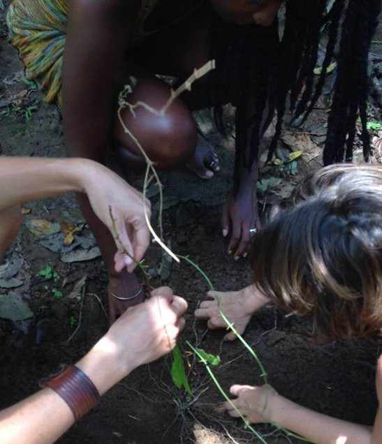 Ancestral Gardening